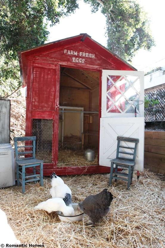 Un poulailler design dans votre jardin moving tahiti - Installer un poulailler dans son jardin ...